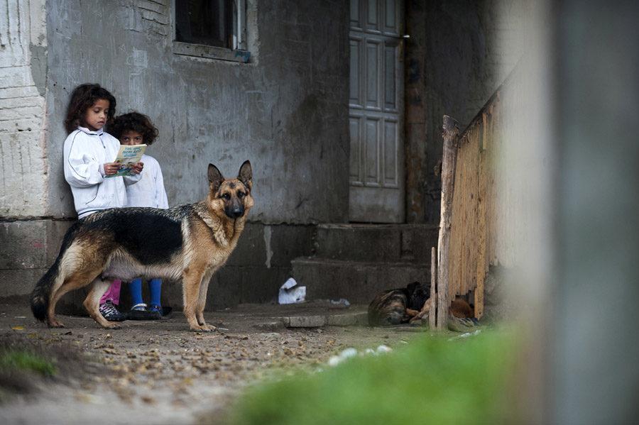 Programok roma gyerekeknek