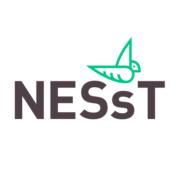 NESsT Magyarország